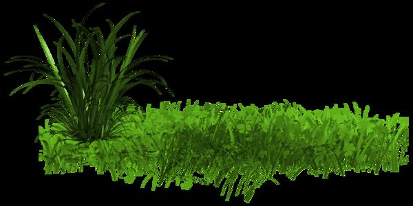 L'herbe n'est pas plus verte ailleurs, elle est juste plus grande 7cbc6ef2